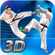 Karate Fighting Tiger 3D – 2